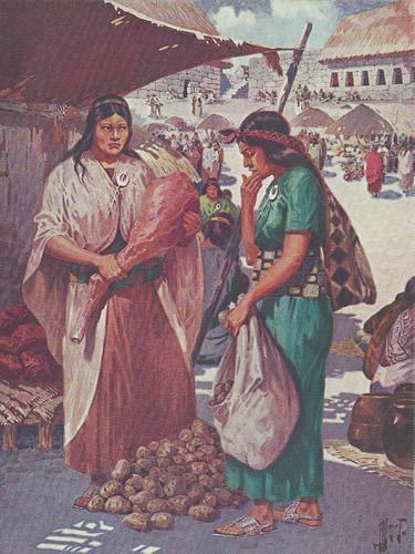 Incas: En el Reino de los Hijos del Sol. Ilustraciones de..