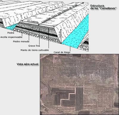 El Sitio De Tiwanaku Tiahuanaco Camellones O Sukakollos